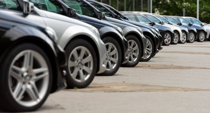 20,000 families bought cars with gov't subsidy so far