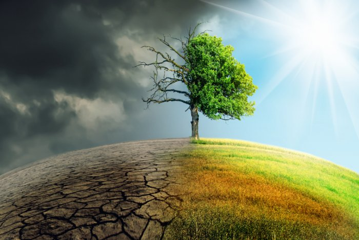 Survey reveals positive climate protection attitudes, habits