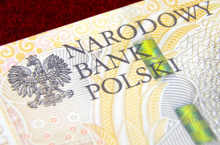 Poland holds key interest rate at record low