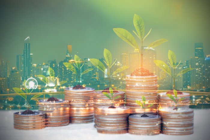 Hungarian banking sector lags behind in green finance