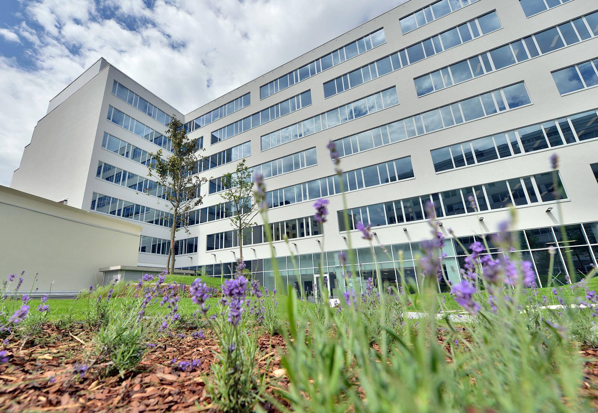 Nordic Light Trio achieves LEED Gold, Access4you Gold certifications